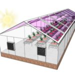 Вчені США довели можливість створення енергетично нейтральних теплиць в деяких регіонах